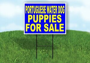 Portuguese Water Dog Puppies For Sale Yellow Yard Sign Road With Stand Lawn Sign