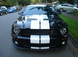 For All Ford Mustang 10 Inch Make Duel Racing Stripe Vinyl Graphic Decal 40 Feet