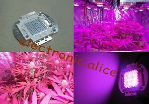 100w Multiband 7 band Full Spectrum High Power Led Plant Grow Light Grow flower