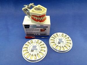 Typodont 860 Dental Universal Plate Training Replacement Teeth Upper Lower Kit