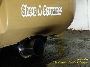 She S A Screamer 10x2 13 Decals Stickers Graphics Banners Import H22 Rims Jdm