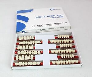 5 Box 3sets Acrylic Teeth Denture Vita Color A1 Large Size 501 Artificial Teeth