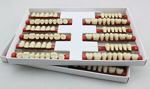 5 Boxes 3sets Denture Of 28 1 Dental Acrylic Resin Teeth Vita Color A1 Size 503