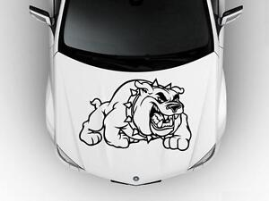 Bulldog Dog Hood Car Decal Race Sports Grpahic Art Sticker Truck Wrap B16