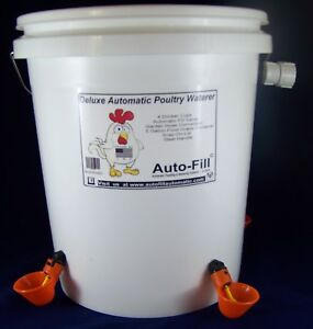 Auto fill 4 Drinker Cups 5 Gal Poultry Bird Fowl Automatic Filling Waterer