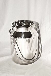 2 Qt Stainless Steel Milk Can Tote