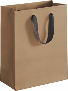 100 Chelsea Kraft Manhattan Paper Bags Eco Euro shoppers 8 X 4 X 10