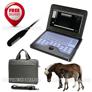 Usa Seller Ce Vet Veterinary Ultrasound Scanner Animal Rectal Laptop Machine