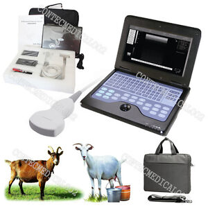 Vet Veterinary Portable Ultrasound Scanner Machine For Sheep goat pig convex