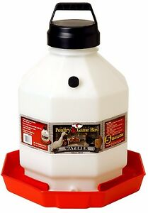 Little Giant Large Capacity Waterer Durable Dent resistant W handle 5 Gallon