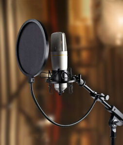 Double Layer Microphone Wind Screen Mask Gooseneck Shield Filter Studio YouTuber $6.20