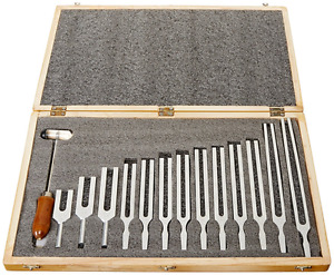 New Tuning Fork Wooden Box Set With Mallet 13 Forks Hard End With Wooden Case