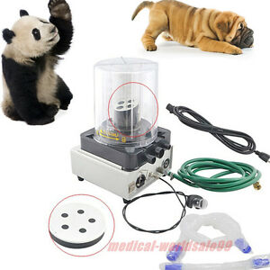 Veterinary Anesthesia Ventilator Pneumatic Driving Electronic Led Display Cesale