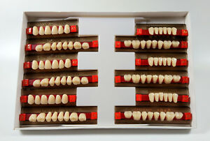 6set 168pc Dental Complete Denture False Tooth Fake Acrylic Resin Teeth A2 Color
