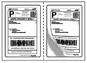 Perforated Round Corner 4000 Half Sheet Self Adhesive 7 5 X 5 125 Shipping Label