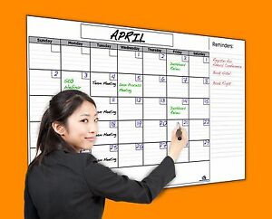 Usi Jumbo Dry Erase Wall Calendar 36 x60 Never Leaves Marker Stains