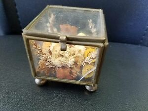 Vintage Brass And Glass Trinket Box Hinged Top With Dried Flowers Glued Inside