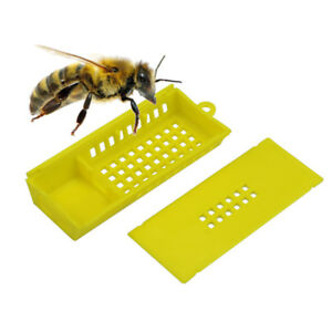 100pcs Bee Cage Beehive Honey Beekeeping Queen Cage Beekeeping Tools Wholesale