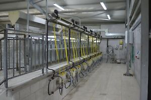 Milking Parlour For Goats 1x24x24
