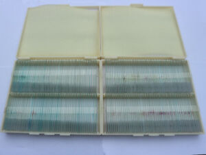 200pc Professional Plant Animal Insect Specimen Glass Prepared Microscope Slides