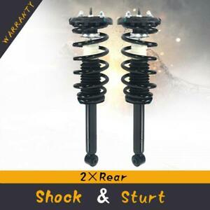 Rear Pair Complete Struts Coil Spring Assembly Set For Nissan Maxima 2002 2003