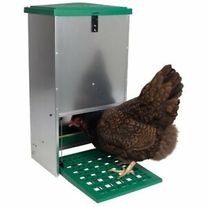 Automatic Treadle Feeder For Chickens And Other Poultry 9 Hens 44 Pounds Of