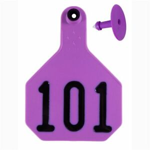 Y tex Large 4 star Tags Cattle Fade Tear Resistent 101 125 Purple 25ct Pkg
