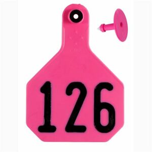 Y tex Large 4 star Tags Cattle Fade Tear Resistent 126 150 Hot Pink 25ct Pkg