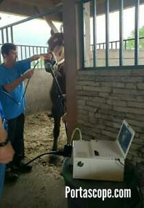 New Veterinary 12 9mm X 3m Video Equine Endoscope Endoscopy System Pc 2 Year War