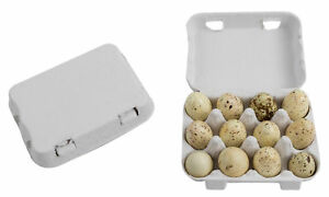 Pulp Quail Egg Cartons 12 Holder One Dozen Each Paper Container Tray 50 Pack