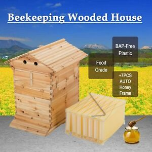 10 frame Bee Hive Frame W 7pcs Auto Honey Hives Beekeeping