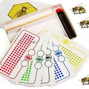 A Set Of Opalistic Number Bee Labels Starter Kit Bees Honeybee Marker Mark