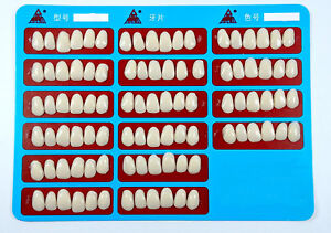 Dental Composite Veneers Teeth Whitening Temporary Crowns A2 a3 Upper Anterior