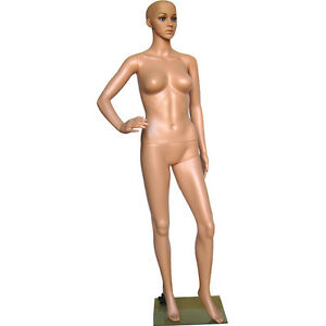 Mn 234 Fleshtone Plastic Ladies Full Size Mannequin With Removable Head