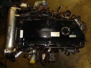 Isuzu 4hl1 4 Cylinders Turbo Diesel Engine Isuzu Nkr81 Elf 4770cc