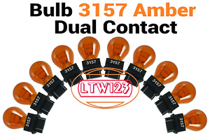 10 3157 Light Bulb Amber Sun East Dual Contact