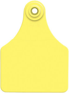 Allflex Global Large Ear Tags With Buttons 3 X 2 1 4 Yellow Blank 25ct Pkg