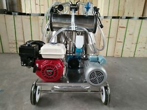4mul8 Machinery Gasoline Vacuum Pump Milking Machine For Cows Double Tank