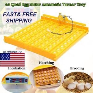 63 Position Incubator Chicken Quail Turning Tray With Pcb Turning Motor For Eggs
