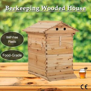 Bee Hive Frame For Bee Keepers Beehive Wooden Beekeeping House Box