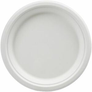Amazonbasics 9 inch Compostable Plates 500 count