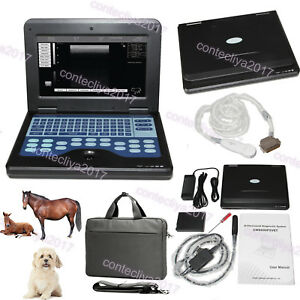 Vet Veterinary Laptop Ultrasound Scanner 2 Probes For Equine cows sheep cat dog