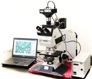 Leica Leitz Dmrb Fluorescence Trinocular Microscope With Two Spot Cameras 4763