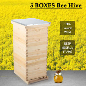 For10 frame Size Beekeeping Kit Bee Hive Frame beehive Frames W Metal Roof hot