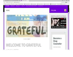 Addiction And Recovery Blog Website For Sale Adsense Ready For Making Money
