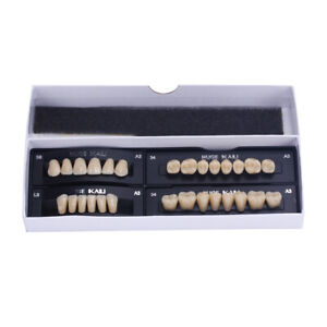 Full Sets Synthetic Polymer Resin Denture Teeth Upper Lower Dental Set