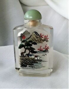 Glass Snuff Bottle Reverse Painted Dw