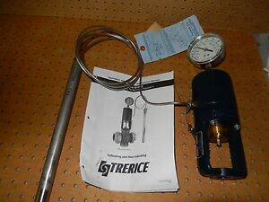 N i b Trerice 91400r0408b06 Self operating Temperature Regulator