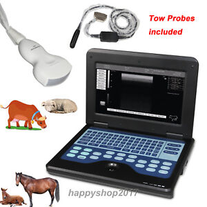 Veterinary Ultrasound Equipment Tow Probes For Large Animals Scanner Horse goat