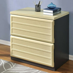 Lateral File Cabinet 2 Letter Legal Size Drawers Home Office Storage Furniture
